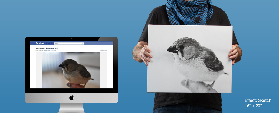 Facebook photo prints to canvas (sketch effect)