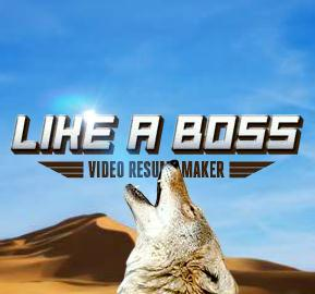 Like A Boss, Dunkin Donuts' Video Resume Maker