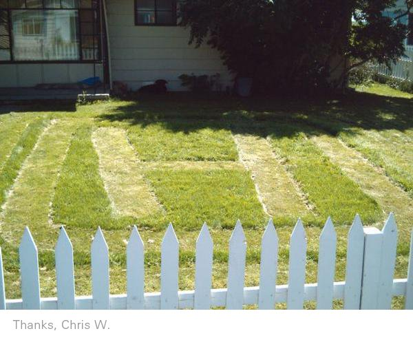 Branded lawn